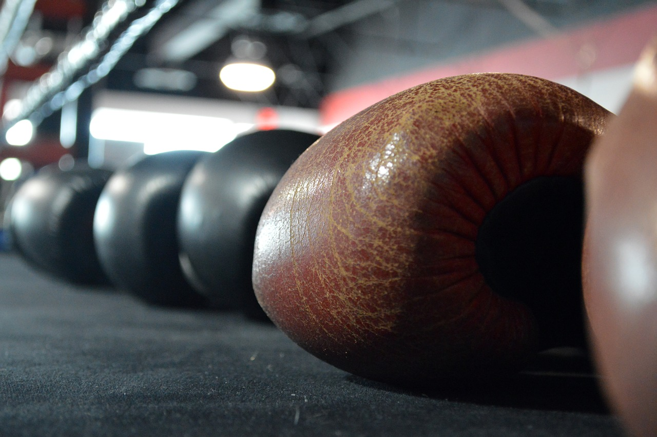 boxing-gloves-375473_1280